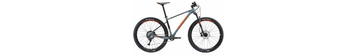 Giant Fathom 29er 2 LTD Grey